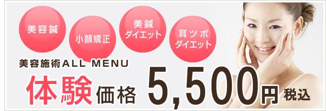 美容鍼、小顔矯正、美鍼ダイエット、耳ツボダイエット 体験価格5,000円